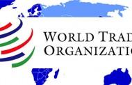 عواید الحاق به WTO «تقریبا هیچ»